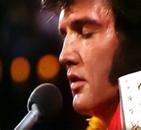 king of rock'n'roll the one and only gif | WiffleGif
