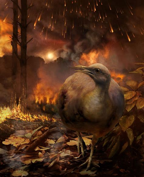 Arboreal Birds Died Alongside Dinosaurs And Trees In