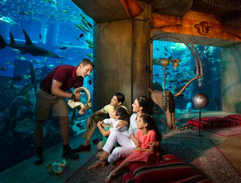 The Lost Chambers Aquarium Tickets: Save up to 32%